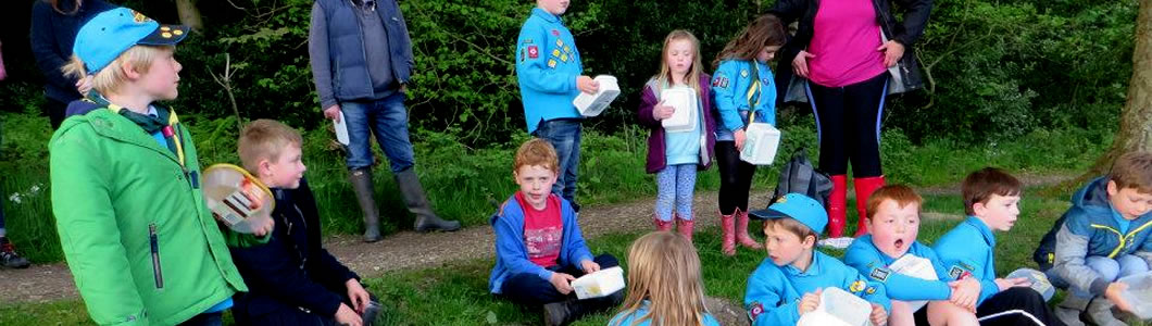 Ripon and District Scouts - Beavers